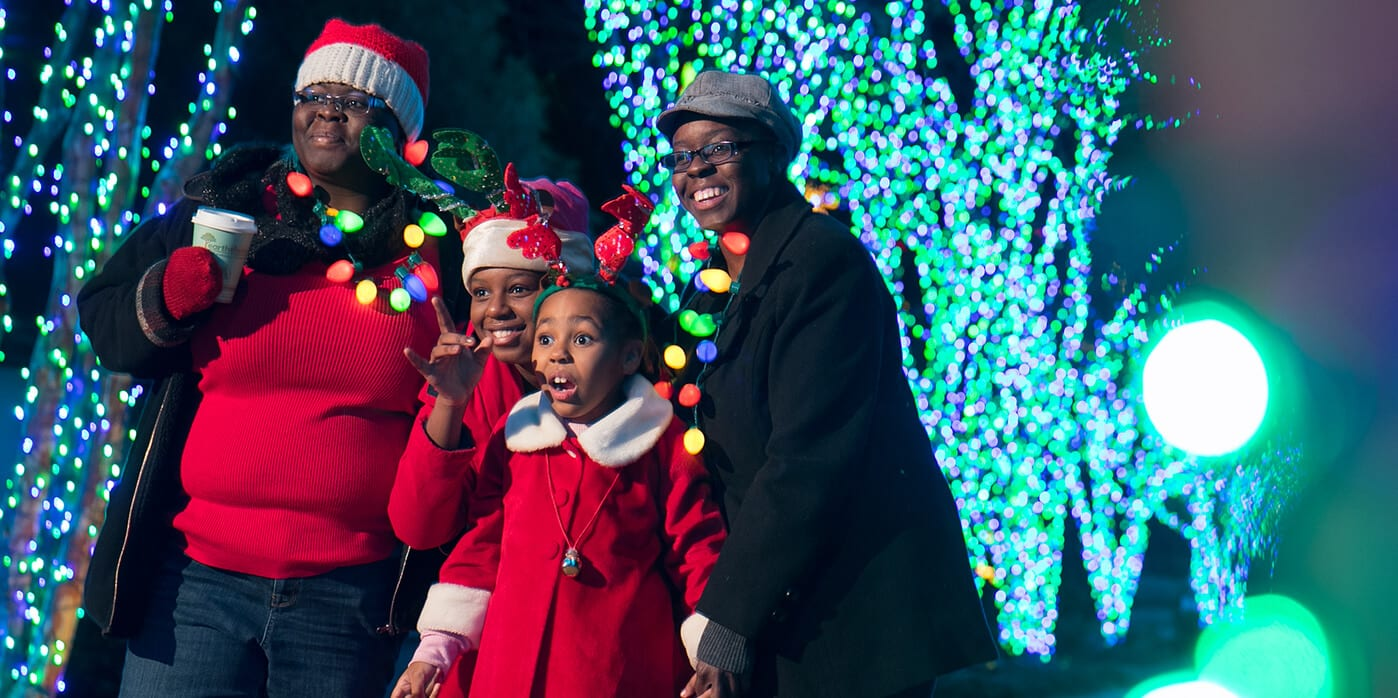 Atlanta Botanical Garden | Garden Lights, Holiday Nights